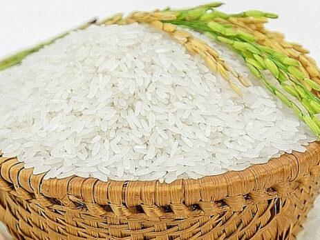Dịch vụ gửi gạo đi châu Âu ở đâu tại Hà Nội?